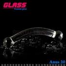 GLASS-優雅懷珠-玻璃水晶後庭冰火棒(Anus 20)