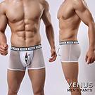 VENUS 偷窺小熊 腰間lOGO花邊 情趣網狀平口四角褲 白