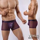 VENUS 偷窺小熊 腰間lOGO花邊 情趣網狀平口四角褲 紫