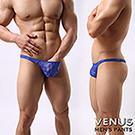 VENUS 蕾絲 性感情趣 透明男丁字褲 藍