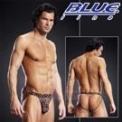 美國Blue Line-摔角手提臀男用褲-豹紋色(L/XL)